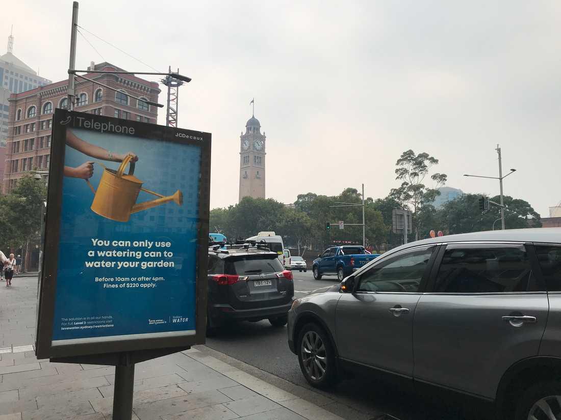 En reklamskylt uppmanar Sydneyborna att bara vattna med vattenkanna, till följd av torka i delstaten.