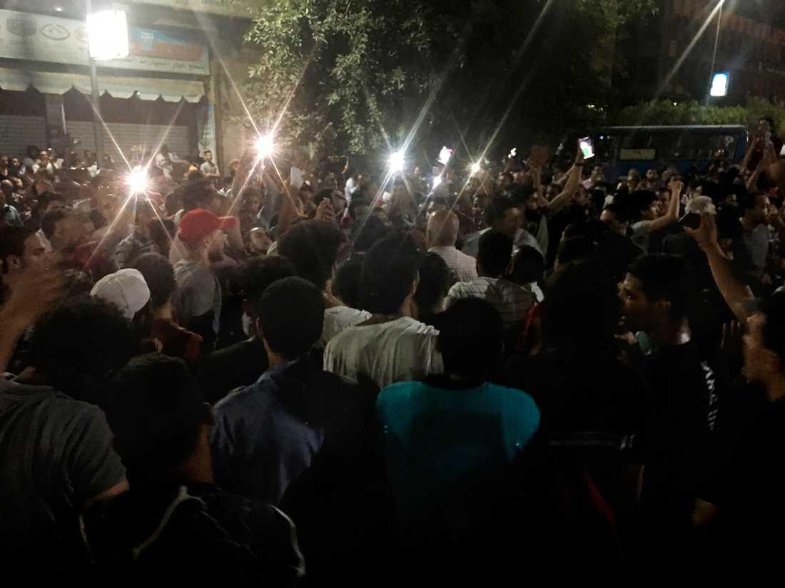 En egyptisk människorättsadvokat, som försvarar demonstranter som gripits under protester mot president Abd al-Fattah al-Sisi, har själv gripits.