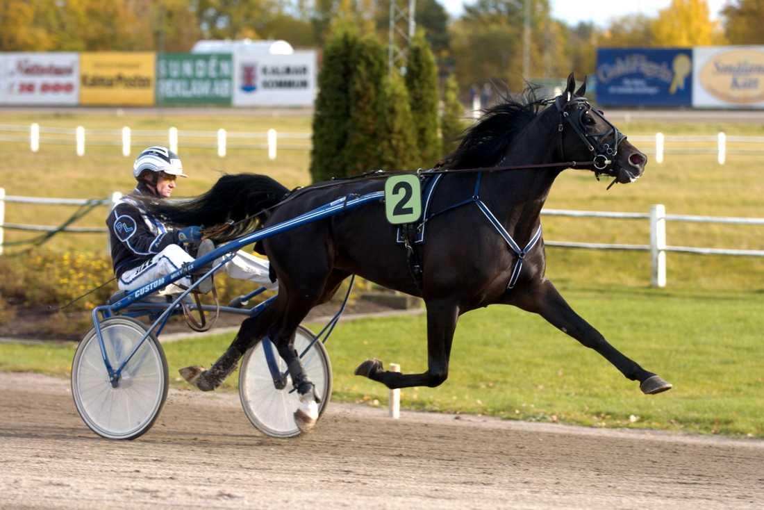 Historisk Peasant gallant blev första hästen att lyckas vinna från det andra extraspåret på Åbytravet.