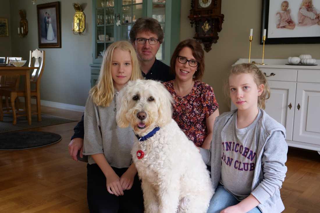 Hela familjen har lärt känna labradoodeln Livia efter att hon hjälpt Elsa under behandlingarna mot hjärntumören. Fr v: Elsa, pappa Johannes, mamma Ann-Catrin och lillasyster Clara.