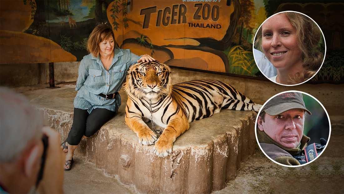 Ofta utnyttjas djuren i turistparadisen timme efter timme, dag efter dag och stressas till slut ihjäl. Då ersätts de med ett nytt djur som rövats från det vilda, skriver debattörerna.