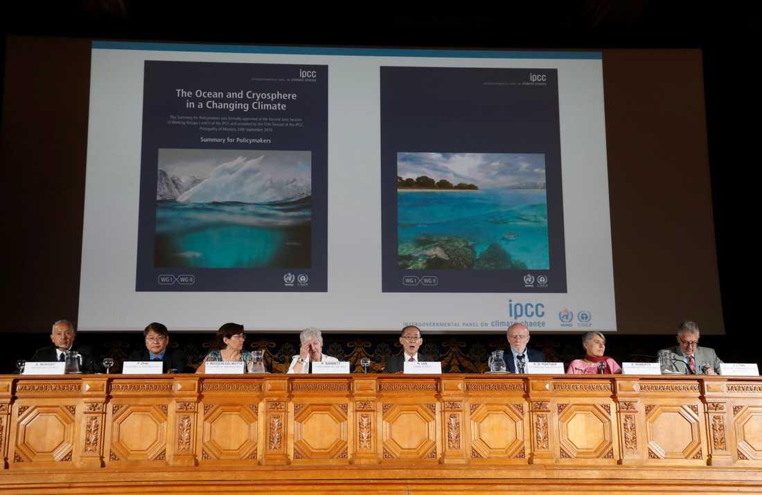 FN:s klimatpanel släpper en ny rapport om klimatet. De säger att havsnivån stiger snabbare än väntat och att haven kan orsaka global misär.