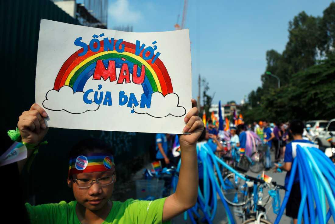 """""""Visa dina rätta färger"""" står det på skylten. Bilden är från fjolårets parad i Hanoi, 2017."""