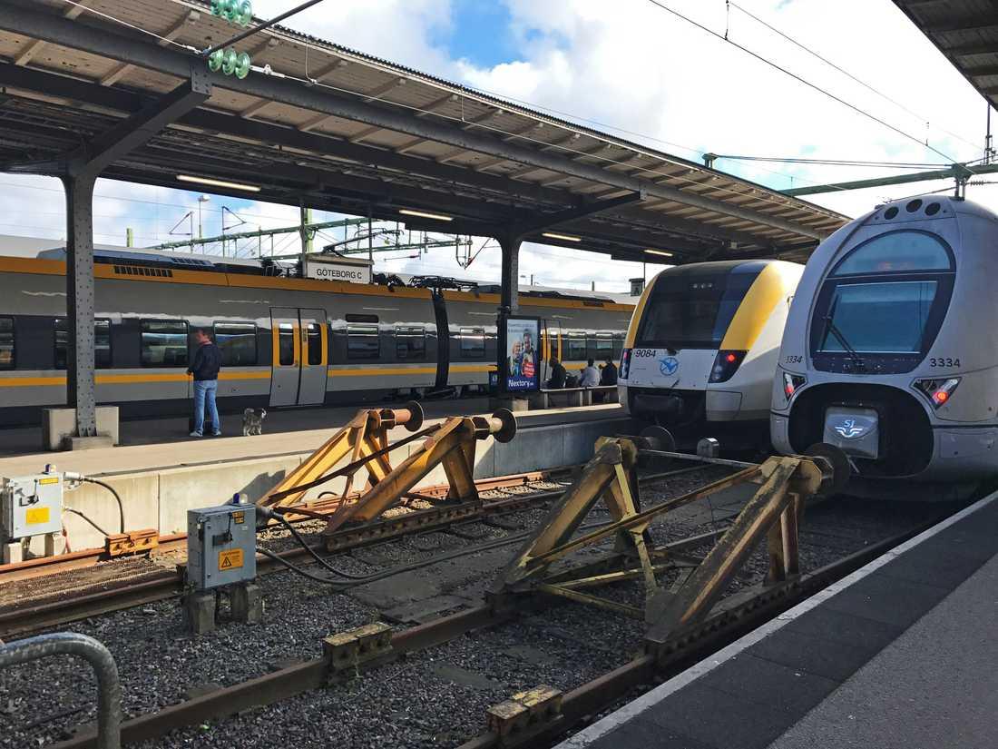Alla tåg till och från Göteborg har stoppats efter att en kontaktledning rivits ner.