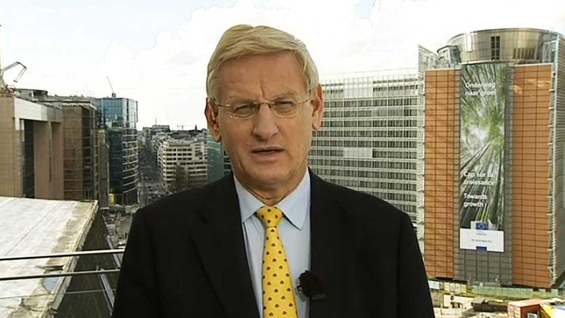 Enligt Bildt finns det tydliga tecken på att de senaste dagarnas händelser planerats väl.