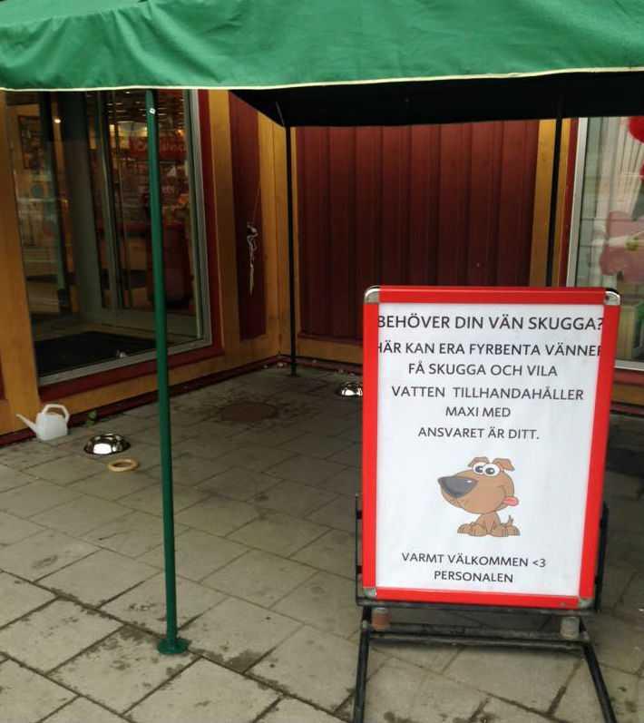 Butikens hundhjälp gillas av tusentals på Facebook. Foto: Linda Backström