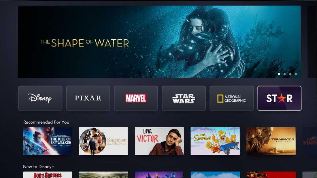 Disney+ lanserar den nya underkategorin Star i februari.