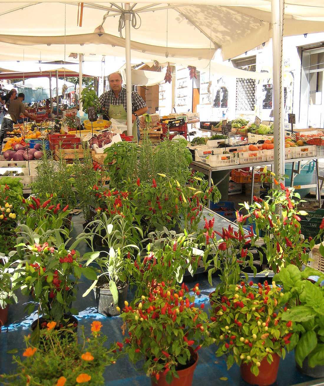 Frukt- och blomsterstånden ligger på rad på Via Pigneto.