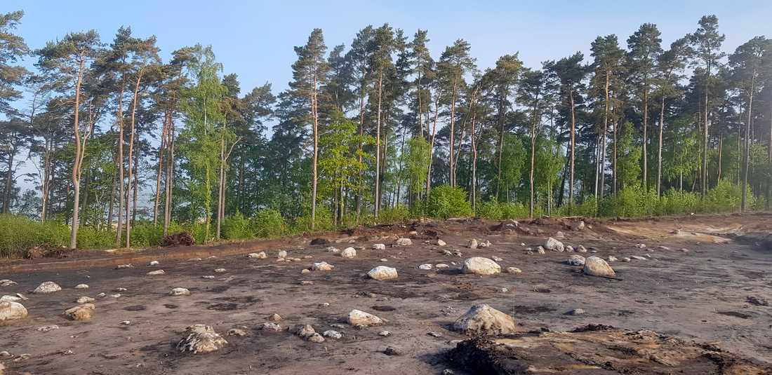 Området ligger precis intill strandkanten. Anledningen till att det kunnat bevaras är att havsnivån steg väldigt snabbt för 8200 år sedan och då täcktes området av gyttja.