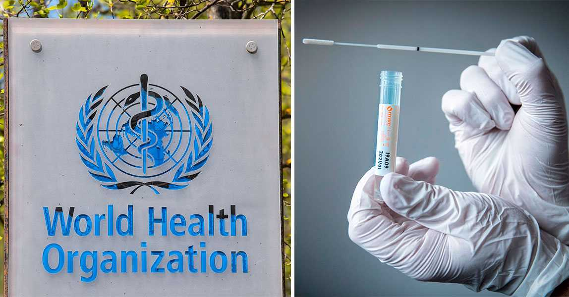 WHO: Inga bevis för att människor som haft covid-19 är immuna