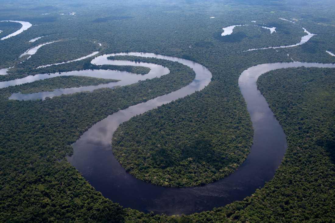 En del av Amazonas i Peru.
