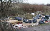 Det var en privatperson som larmade miljöförvaltningen om soporna.