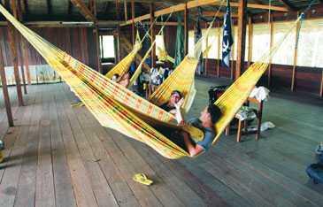 Boendeförhållandena är enkla i djungellodgen på Adventure Camp Mamori. Här sover besökarna i hängmattor upphängda i en stor sovsal.