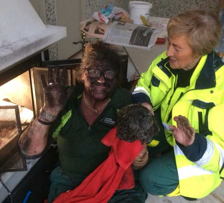 Volontärerna Katarina och Marianne räddade den stackars ugglan.