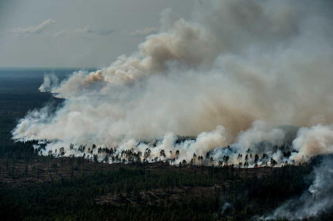 Elden sträcker sig med front som är drygt 7 km lång.