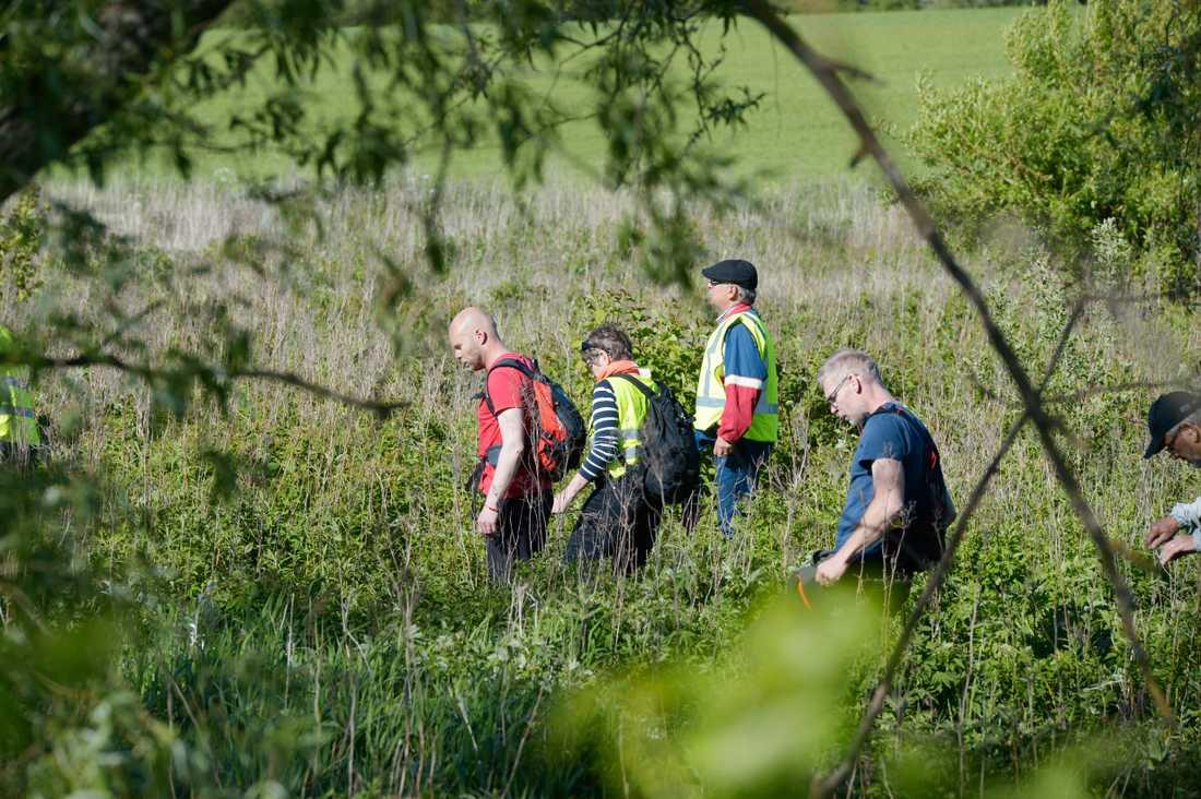 Missing People deltar i sökandet efter Lisa, 17.