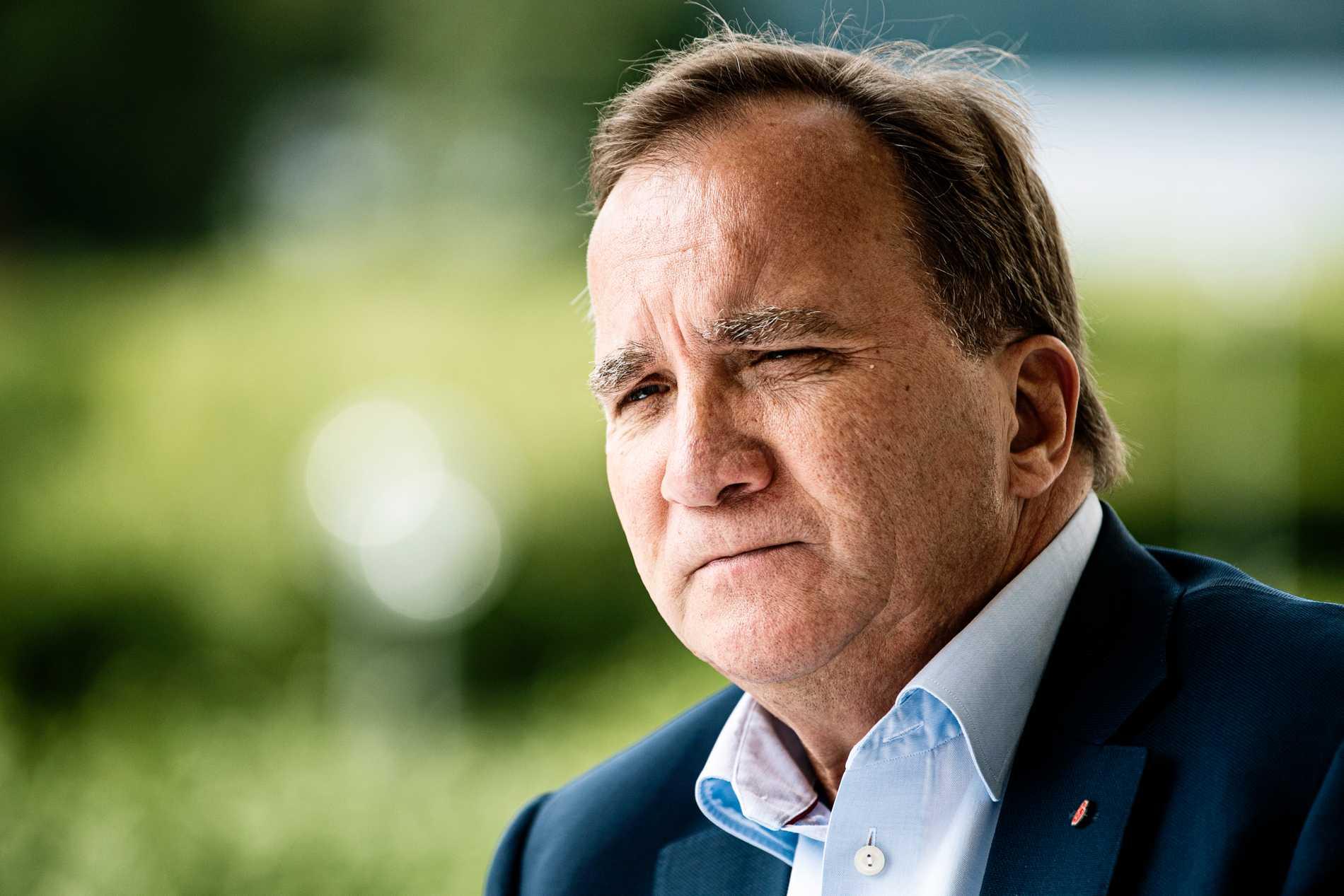 Stefan Löfven menar att grundkonceptet med S och MP är bra.