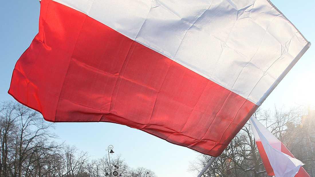 Ex-ledaren för en högerextrem organisation tar plats i Polens regering. Arkivbild.