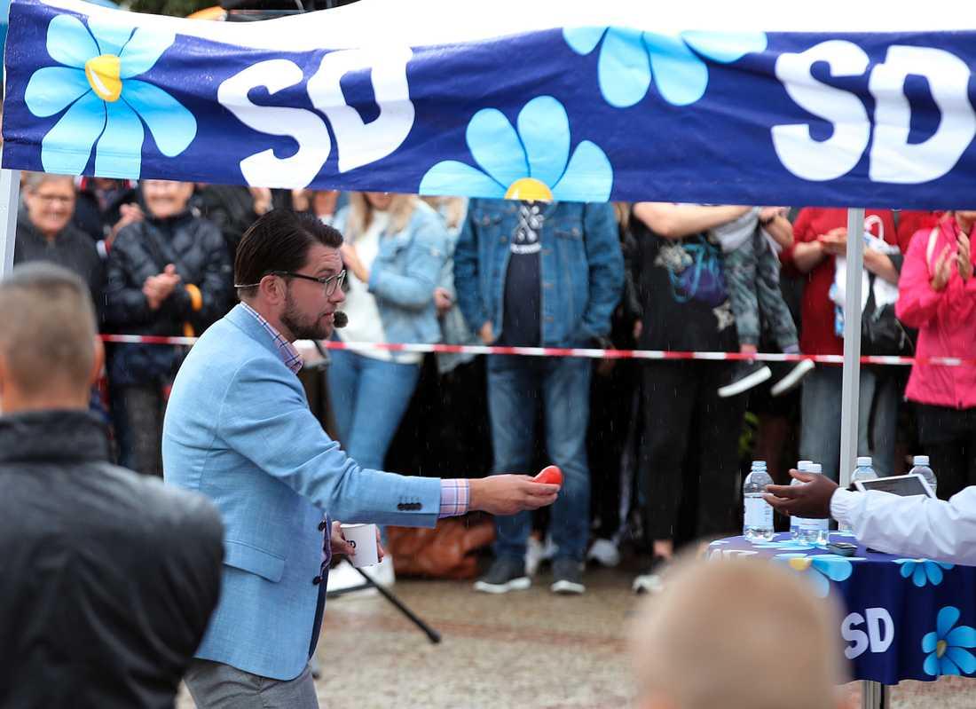 Jimmie Åkesson plockar undan en tomat efter attacken.