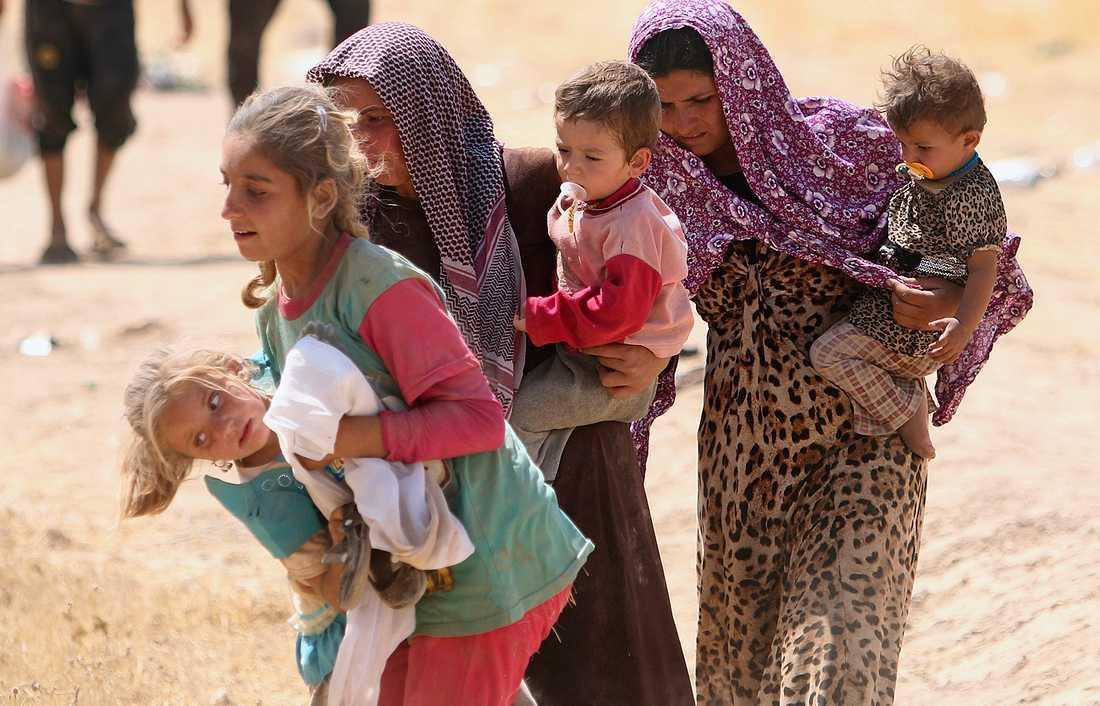 Flyktingar nära den den Syriska gränsen nedanför Sinjarberget.