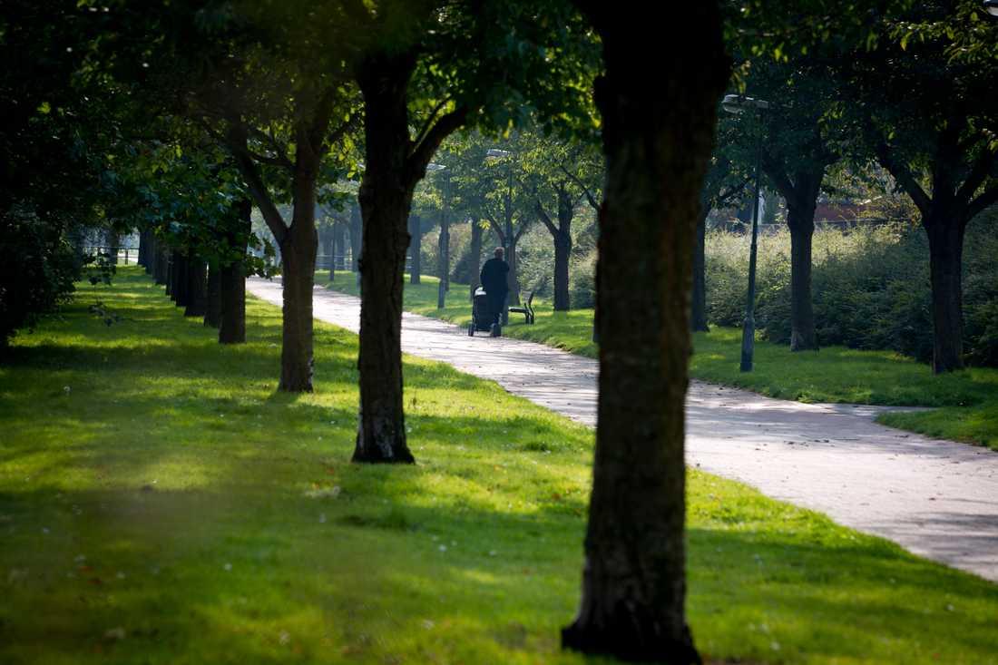 Bellevueparken i Malmö.