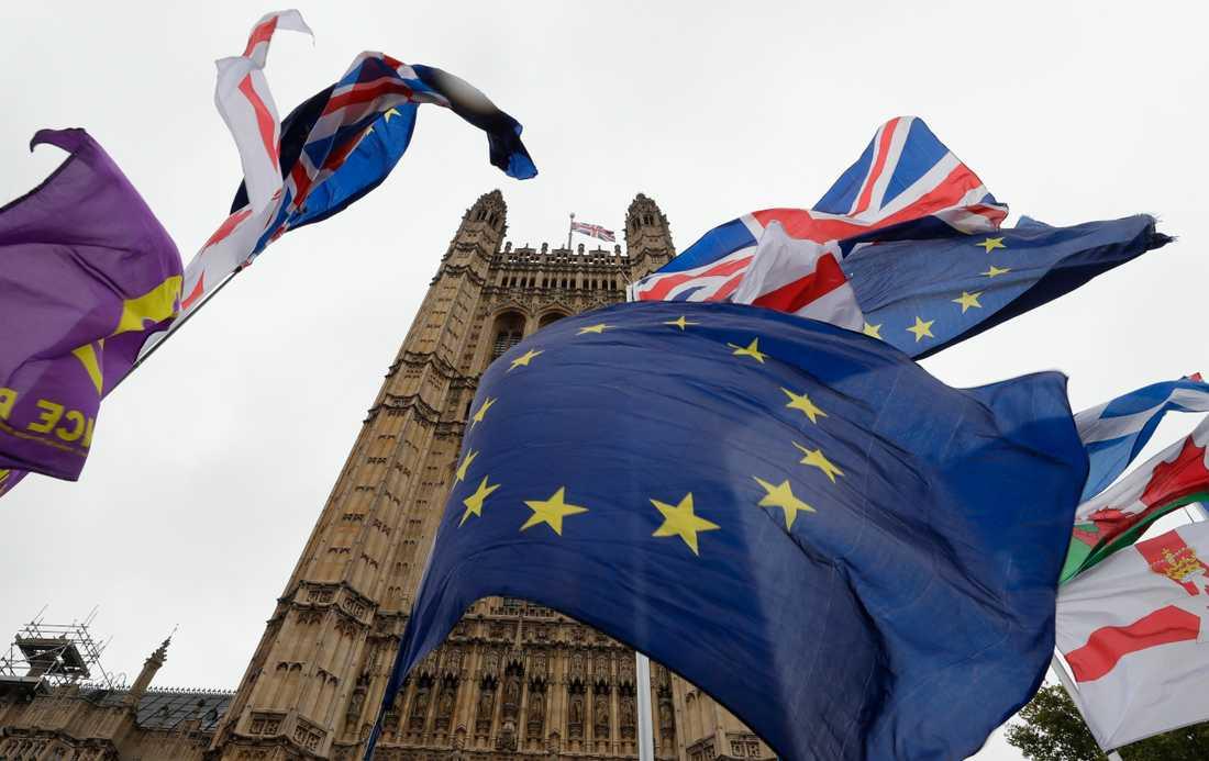 Brittiska flaggor och EU-flaggor kämpar om utrymmet utanför det brittiska parlamentet i London.
