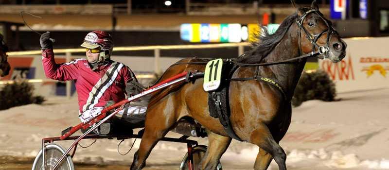 Segergest efter V64-1? Håkan K Perssons jättelöfte Famous Fayline jagar sjätte raka segern.