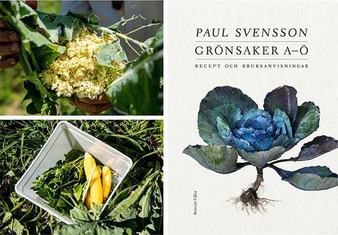"Paul Svenssons bok ""Grönsaker A–Ö"",  (Bonnier fakta). Receptfoto: Charlie Drevstam"