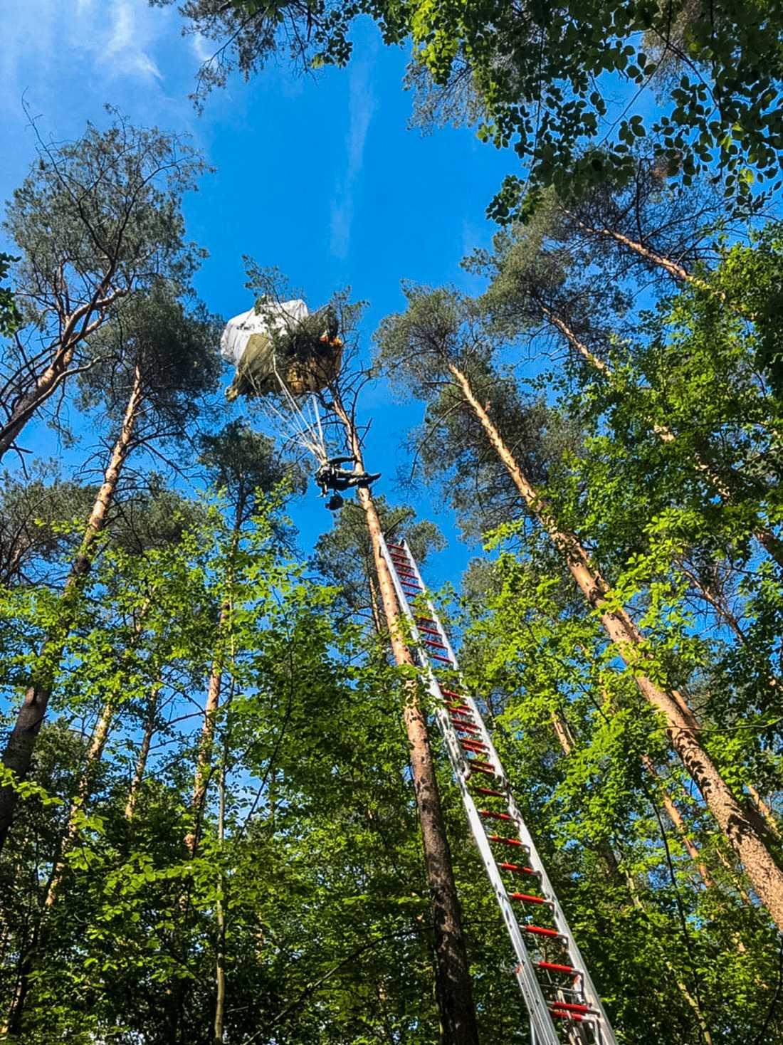 En av piloterna dog . Den andre landade i en trädtopp. Där hängde han 20 meter upp i luften efter flygkraschen.