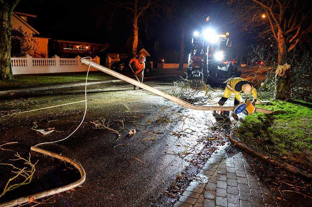 Personal från Kraftringen och Peab röjer undan stormfält träd och lyktstolpe på Sockengatan i Helsingborg natten till måndagen. När stormen Gorm slog till vid midnatt natten till måndagen nådde vindstyrkorna över 30 m/s.