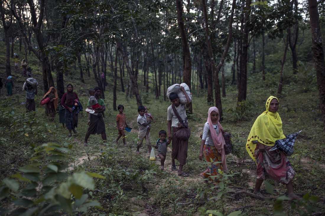Rohingyaflyktingar tar sig till säkerhet i Bangladesh.