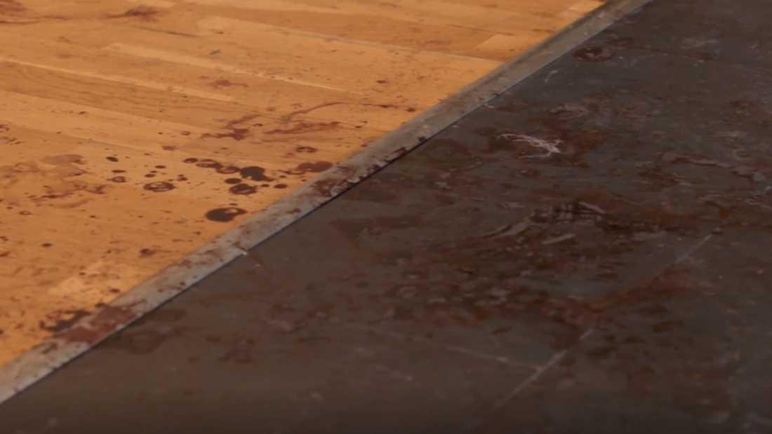 Zannaz man, Fredrik, knivskars i halsen när han försökte stoppa inbrottstjuvarna.