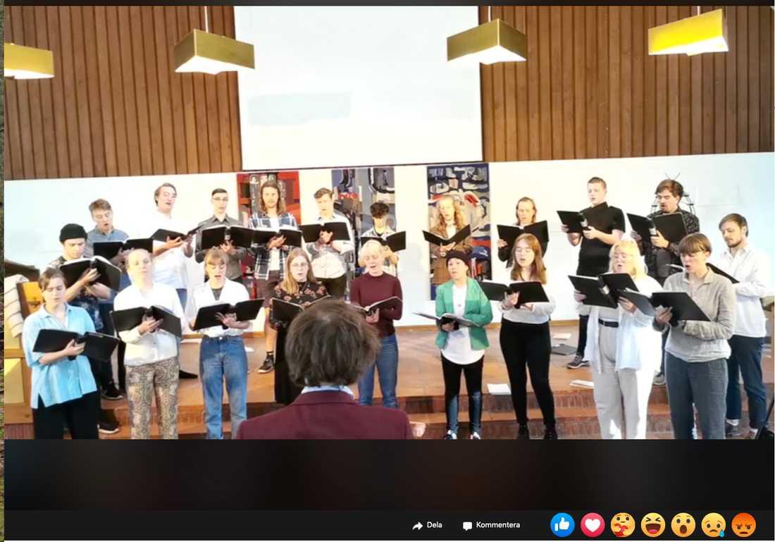 Sjöviks musiklinje fick streama sin traditionella vårkonsert i torsdags via Facebook. På grund av covid-19