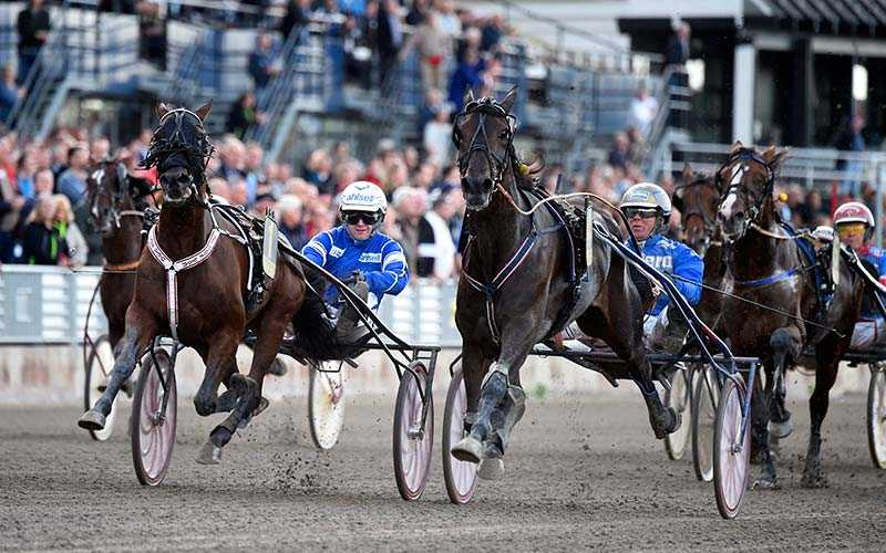 Erik Adielsson vinner Svenskt Trav-Kriterium med Deimos Racing