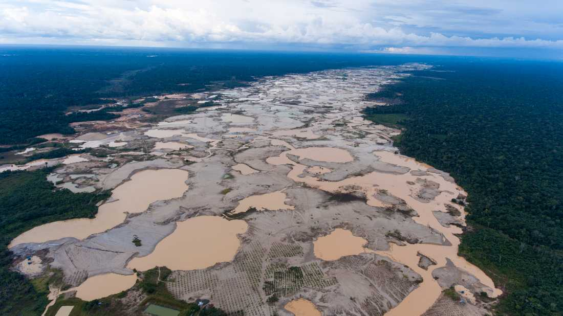 En bild tagen förra året som visar ödelagd regnskog i Amazonas, skövlad av illegala guldgrävare.