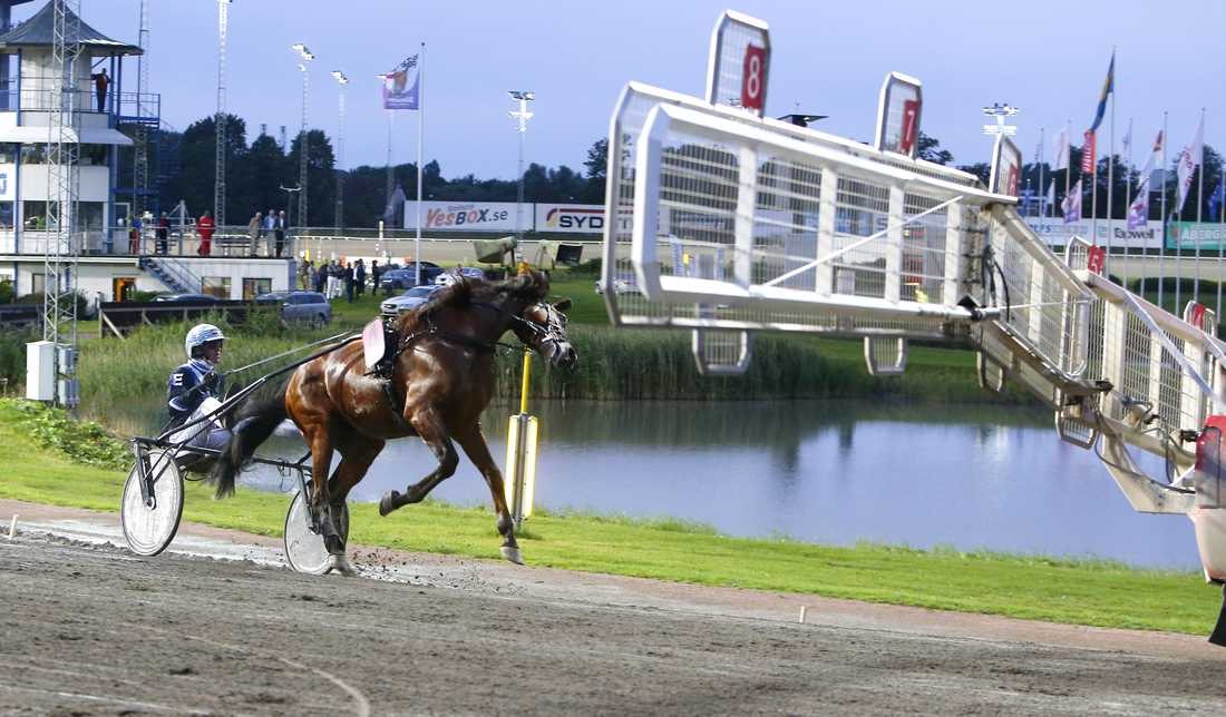 Twister Bi och Christoffer Eriksson. Nu byter hästen regi.