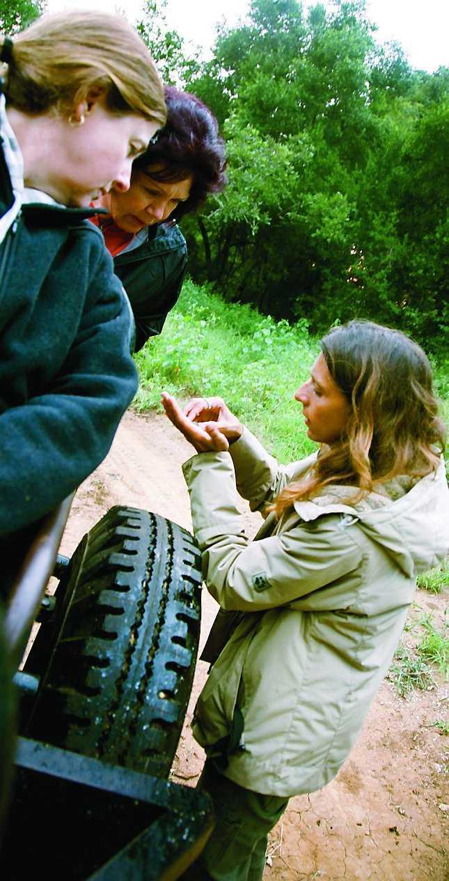 Viltguiden Natalie Benda visar en tordyvel för Robyn Melean och Coral Di Domenico från Australien.