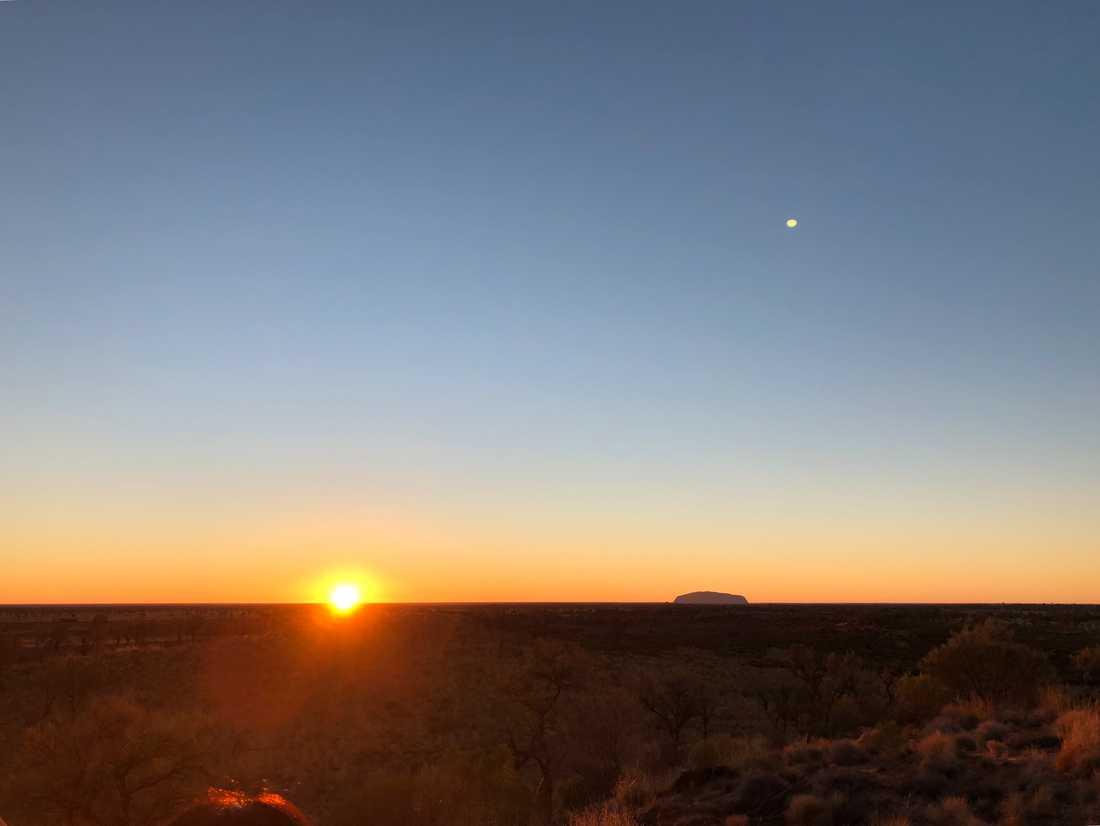 Uluru (Ayers Rock) utmärker sig på många mils håll i det platta ökenlandskapet i centrala Australien. Här fotograferad i soluppgången en kall vintermorgon.