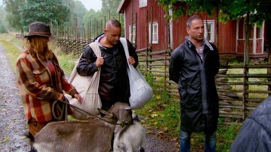 """Håkan Hallin, Lulu Carter och Paolo Roberto i """"Farmen VIP""""."""
