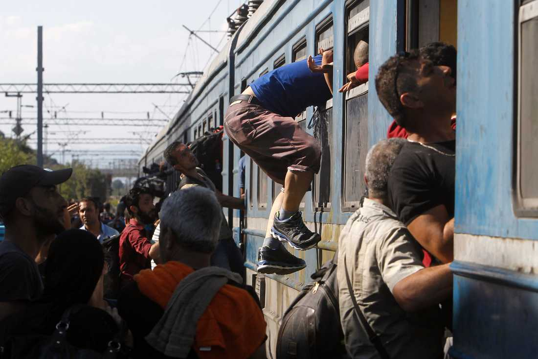 """""""Jag har en känsla av att Ungern inte kommer kunna klara sig utan hjälp utifrån"""", säger en internationell hjälparbetare."""