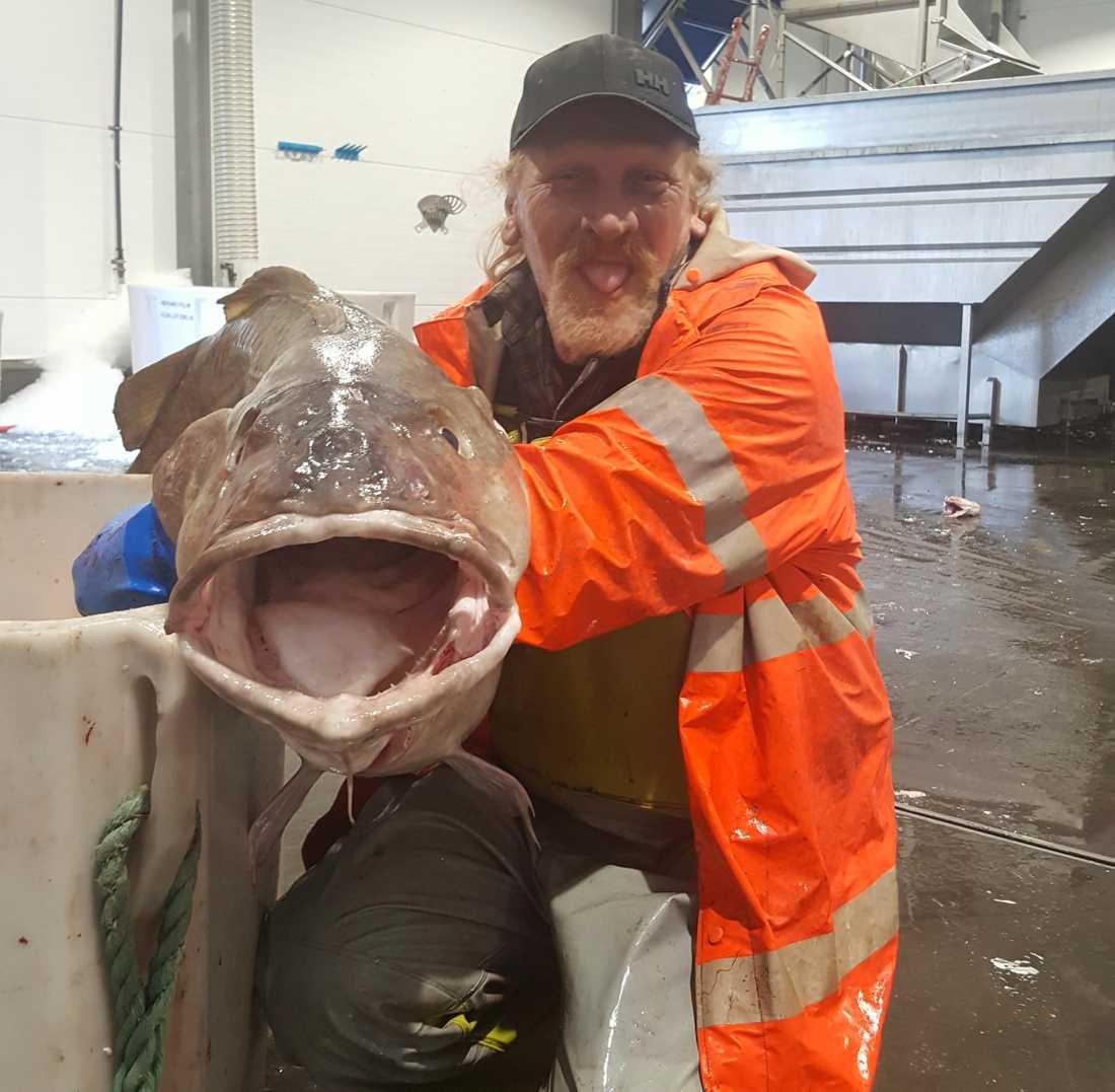 Tonny sålde fisken till den vanliga leverantören i hamnen.