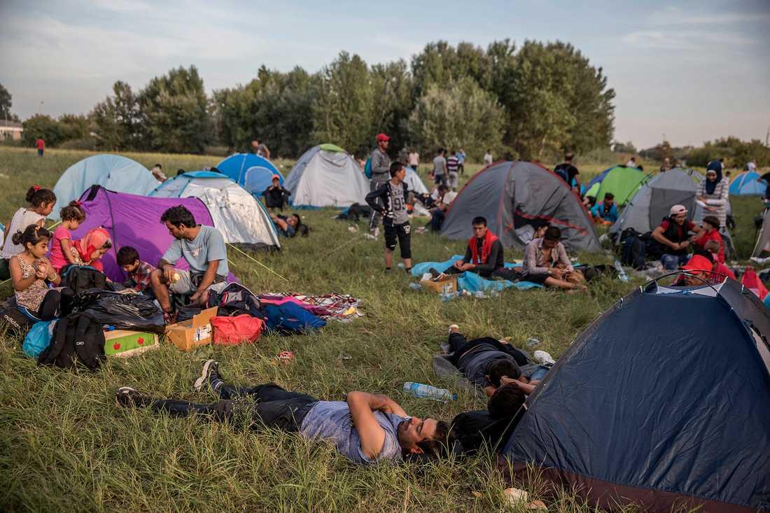 Än så länge är vädret hyggligt, och att sova i tält fungerar just nu. Men många fasar för hur det kommer att bli när det snart blir kallt.