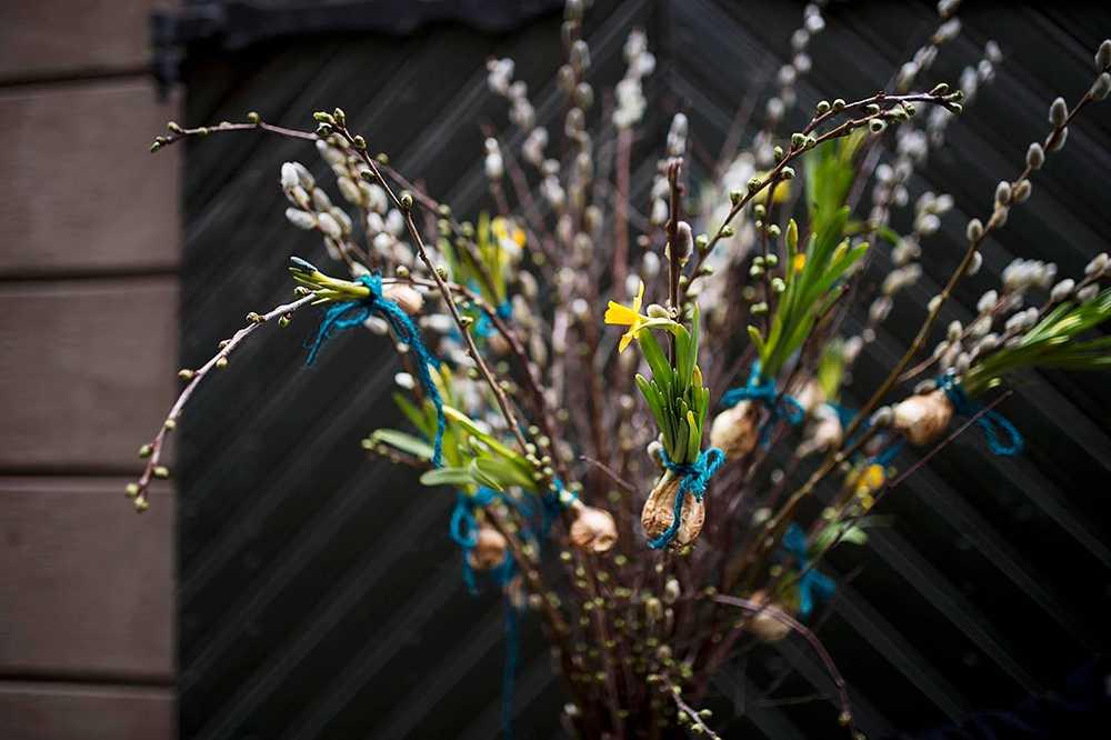 Påskris med påskliljor