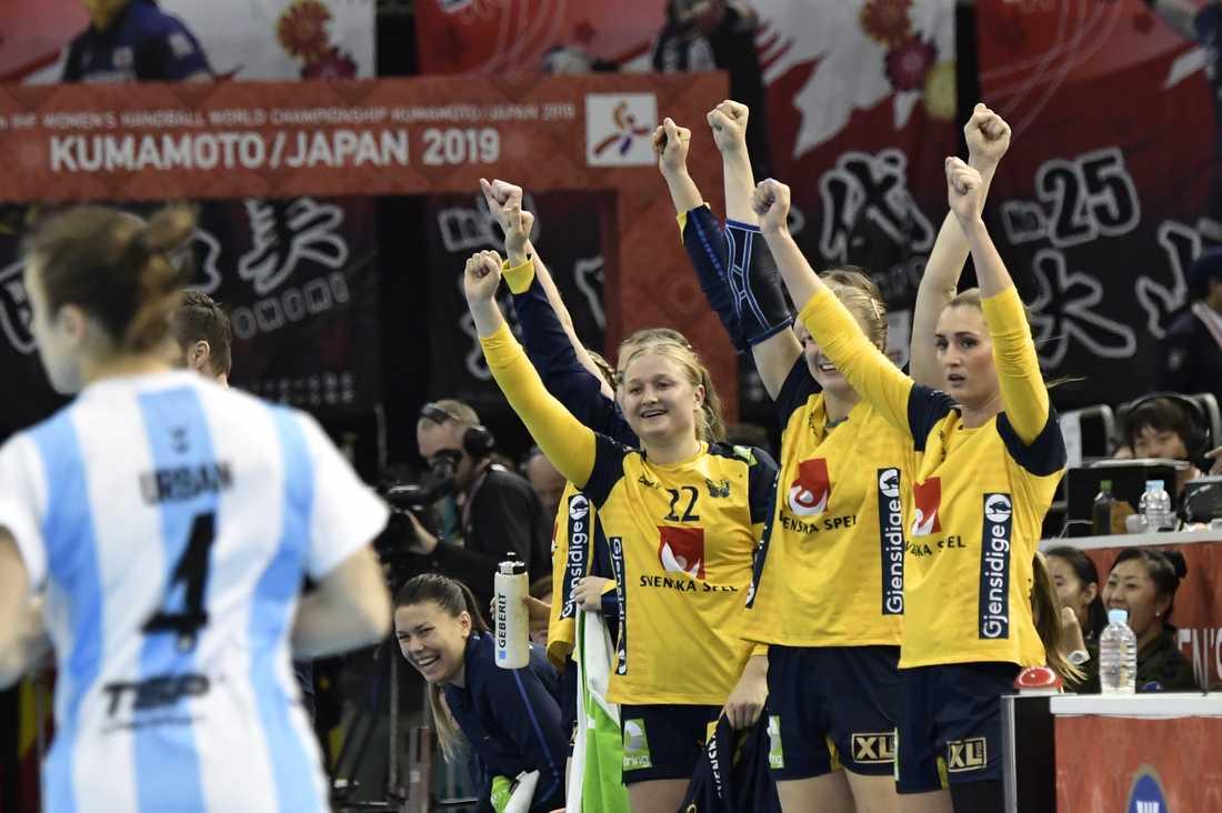 Sverige kommer att spela i grupp B. Arkivbild.