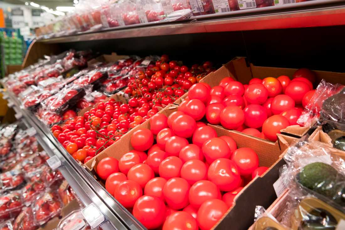 Vad kostar tomaterna? Svenska odlare larmar om svår konkurrens med importerade småtomater. Arkivbild.