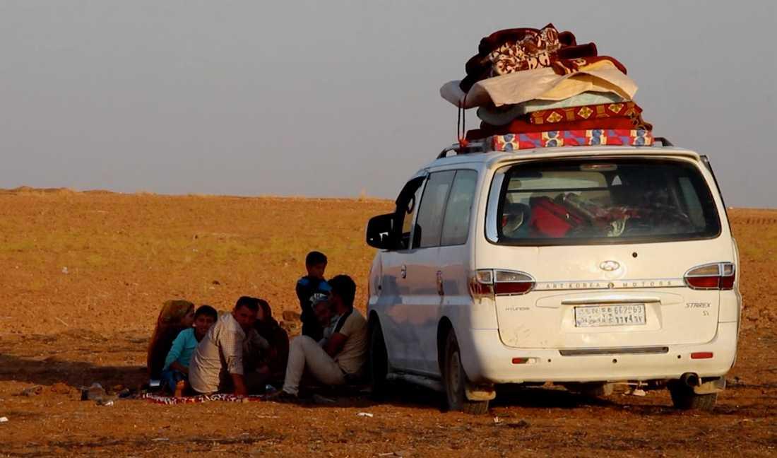 Familj har flytt bombningarna och pausar i staden Kobani innan reser vidare mot gränsen för att söka skydd.