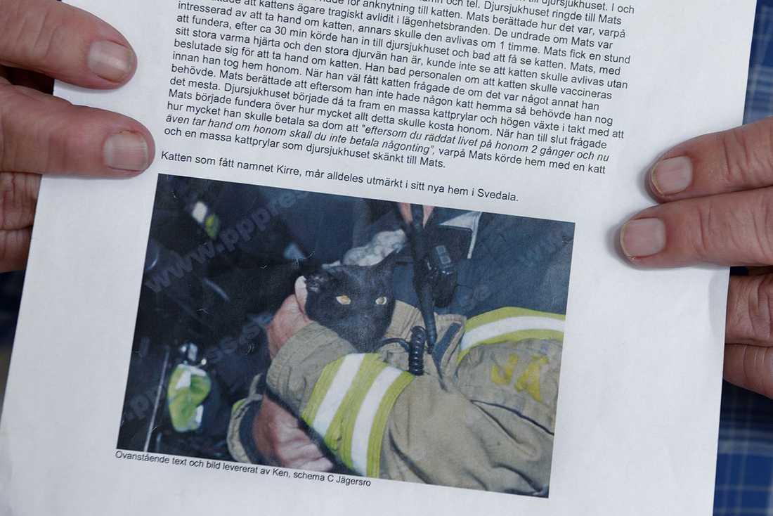 Här finns berättelsen om hur Kirre kom att bo hos Mats och en bild ifrån när han räddades.