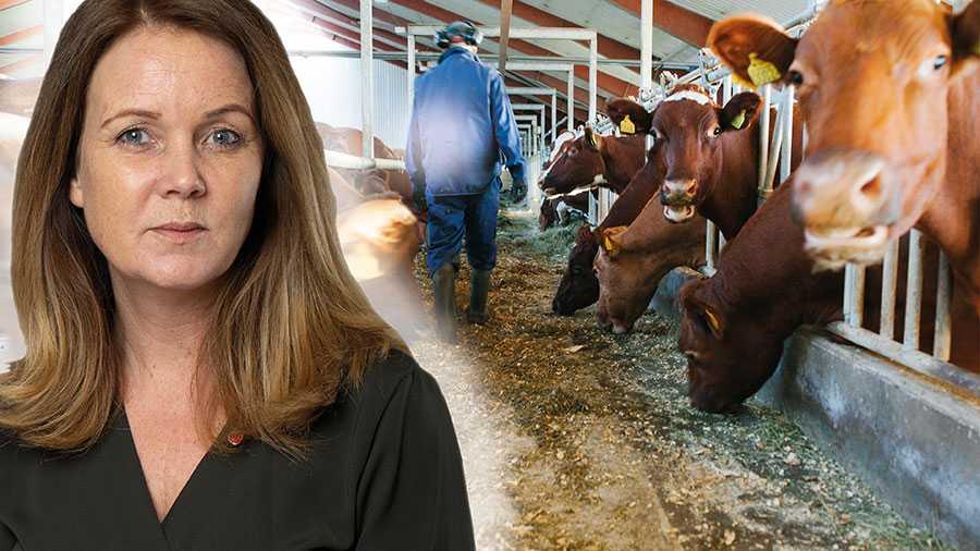 Nu kan vi alla hjälpa det svenska lantbruket. När jag går till min lokala dagligvaruhandel i Halmstad väljer jag i den mån det är möjligt svenska produkter, skriver Jennie Nilsson.