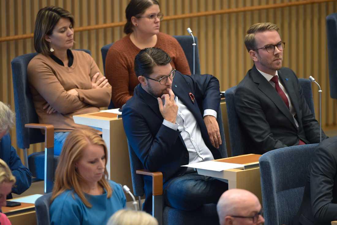 Sverigedemokraternas pertiledare Jimmie Åkesson under misstroendeomröstning mot försvarsminister Peter Hultqvist (S) i riksdagen på tisdagen.