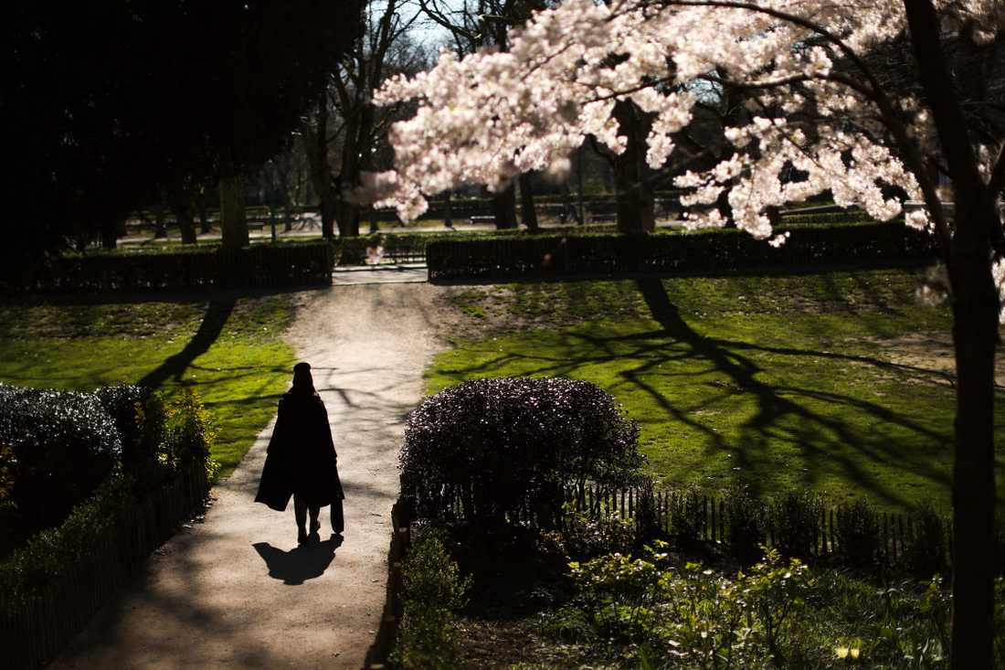 En ensam kvinna strosar i Cinquantenaire-parken i centrala Bryssel.